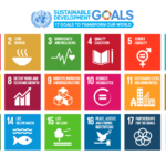 The Prevention and the Sustainable Development Goals (SDGs)